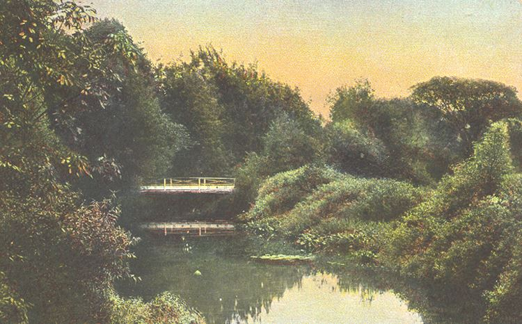 Lake with Bridge